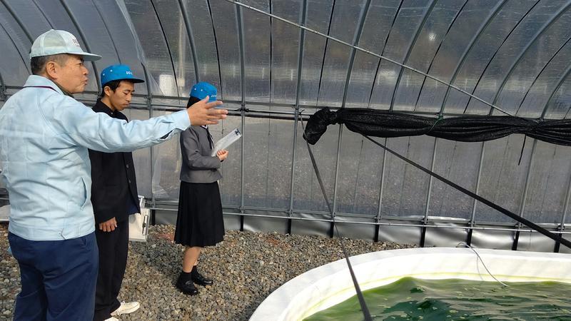 微細藻類の培養施設を見学