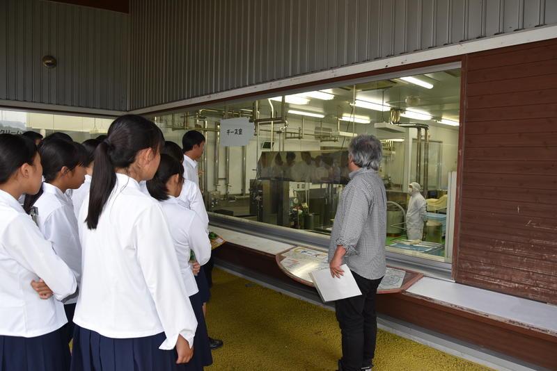 チーズ製造工程の説明