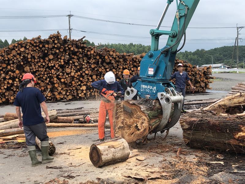 大木も切れます!